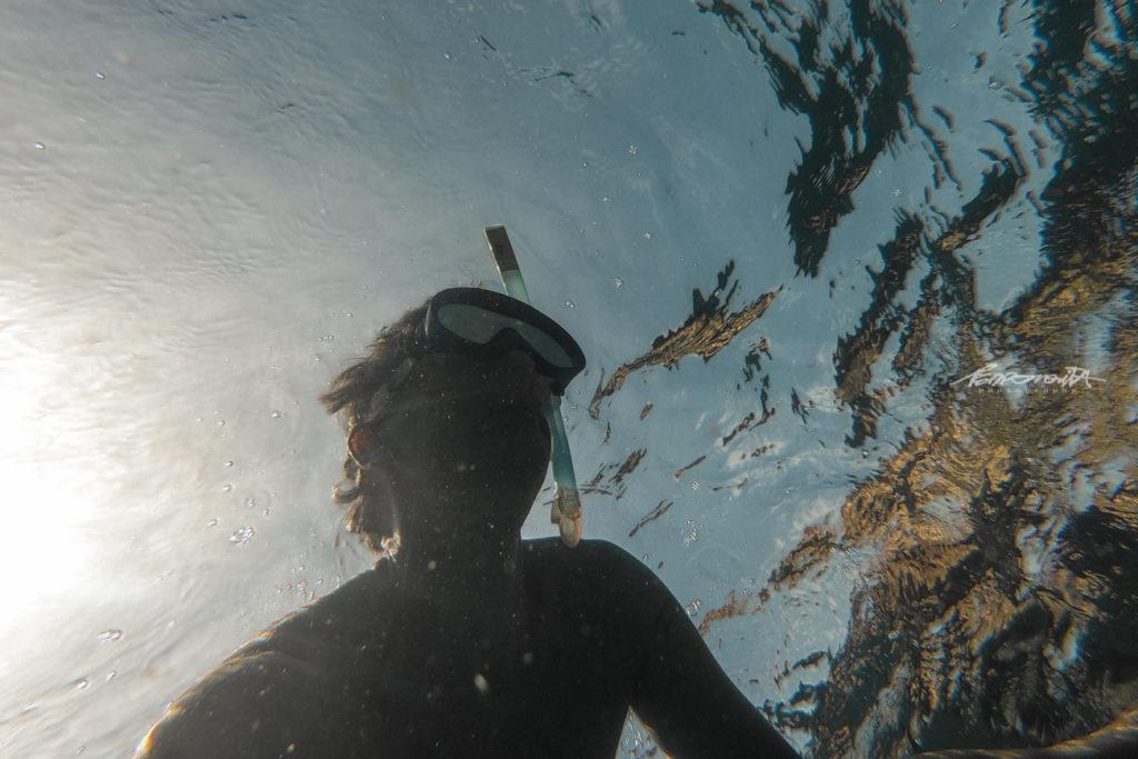 Mergulhadora