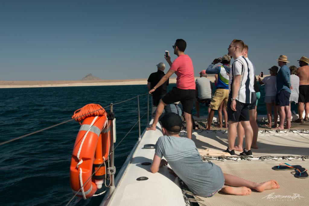 Pessoas num barco a ver baleias
