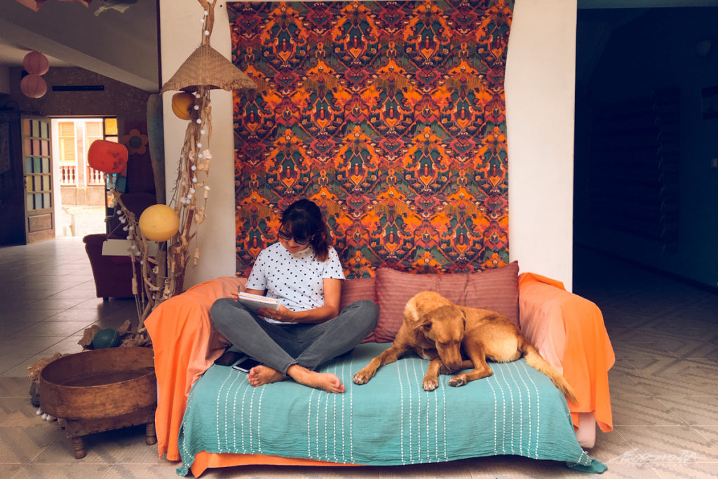 Mulher no sofá com cão