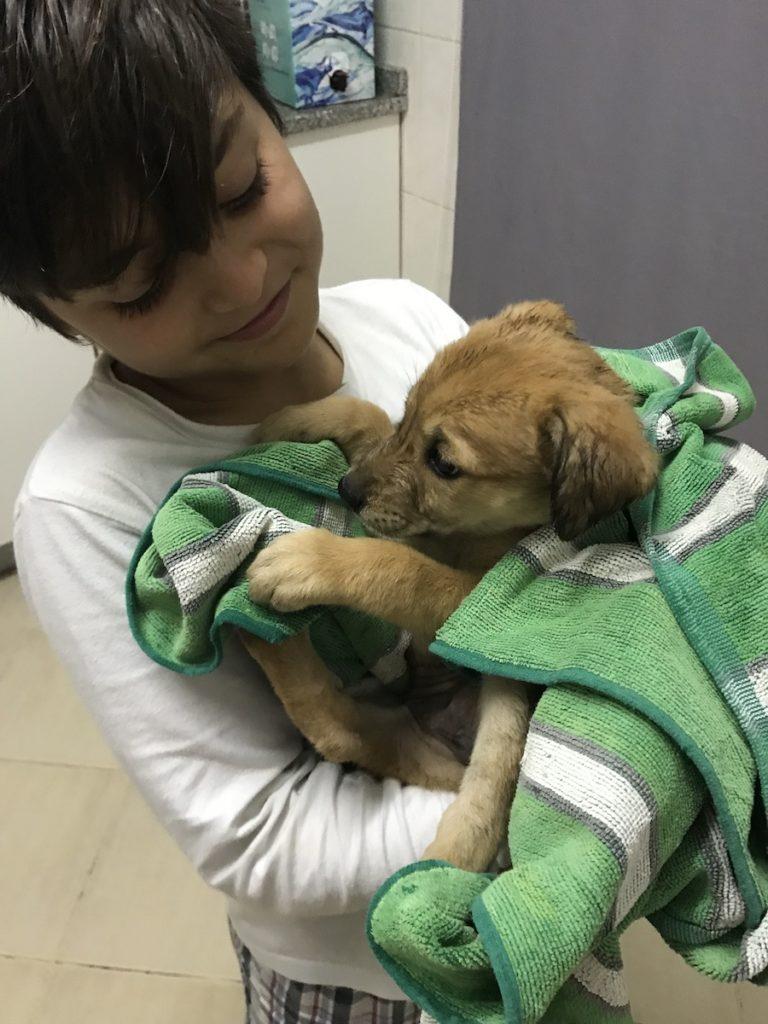criança com cão bebé
