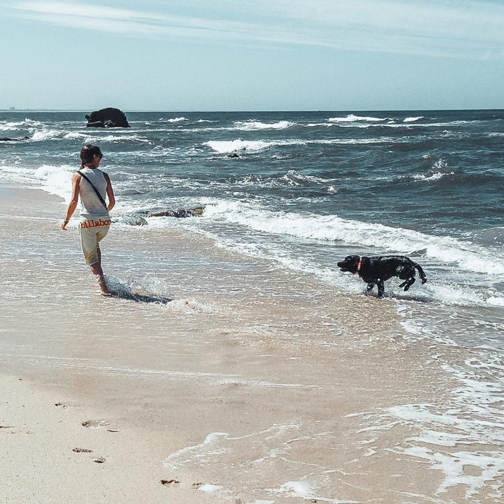 Mulher à beira mar com cão